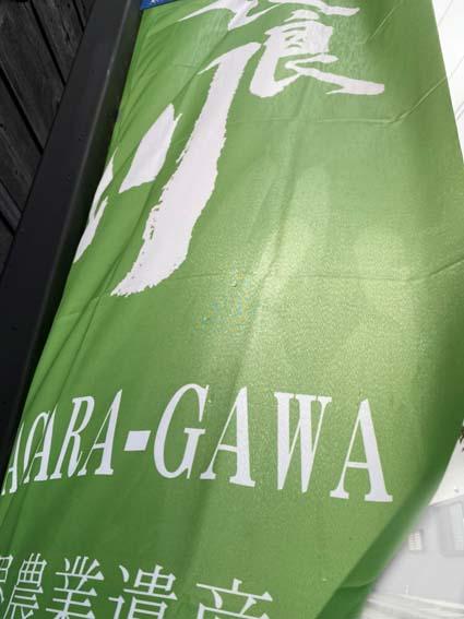 20200708-nagaragawa-flag.jpg