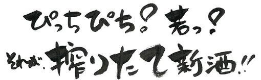 temiji-pop-sinsyu-piti-11-y19cm72dpi.jpg